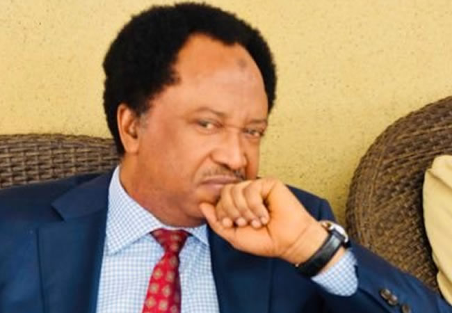 Alleged extortion: Shehu Sani has case to answer, says EFCC_5e18ff1fe20c5.jpeg